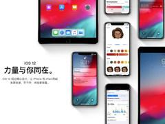 苹果发布iOS 12.1公测版:重磅功能回归;网友:这是要上补丁吗?